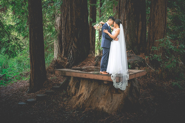 Nguyen & Will (Wedding Photos)