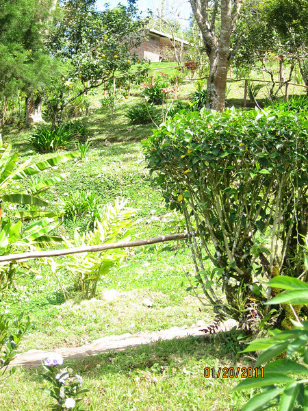 La Finca Esperanza is a lovely ecolodge located outside of the town of San Ramon.  It is quite rural, but the accommodations here are comfortable and way above camping!  I stayed in the little cabin at the top of the hill.