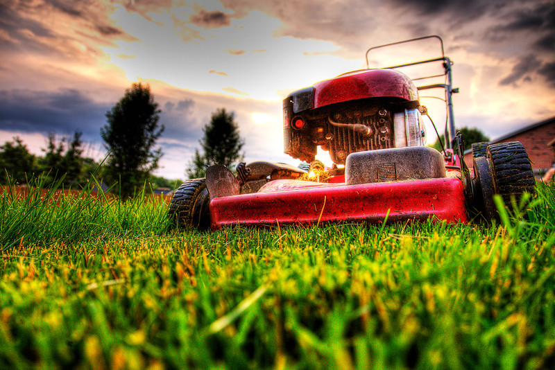137/365 - May 21, 2012 - Yard Mowing <br /> <br /> Tonight I had the chore of mowing a really grown up yard.  It's been almost 2 weeks since I mowed prior to going on vacation.  Last week with all of the catching up I had to do, I just didn't have an evening where I could get it done.  To get my shot for the day, I grabbed my camera after cutting the first strip and shot this perspective.
