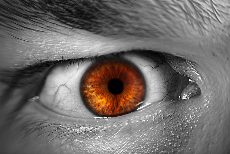 172/365 - June 25, 2012 - I'm Watching You <br /> <br /> My first thoughts tonight were that I was going way out on a limb.  I was wanting to do some macro work tonight, and after Googling for some ideas, I came across a pretty cool eye close up.  To execute the shot, I set the camera up on a tripod with macro filter, and my two Alien Bees flashes and began to snap away.  It took several shots to get the focus to an acceptable level since I was just guessing on how close to place my eye away from the camera.  A little Photoshop work later, and what you see is what I came up with for the day.