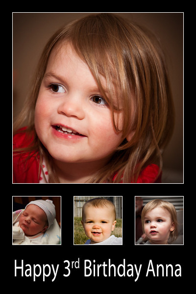 54/365 - February 28, 2012 - Anna at Three <br /> <br /> Today was Anna's 3rd birthday.  Instead of posting just one shot of her today, I made a collage containing a photo from birth and each of her birthdays so far.  She is growing up way too quickly as you can see...
