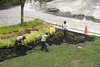 P8.2 Landscaper /landscaping crew / To replace image on page 202.<br /> Choice 3 of 8<br /> <br /> Black male and Hispanic male landscapers dig on lawn outside the Village at Merrick Park in Coral Gables, FL