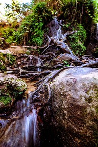 Nifgashim Kavua Watter and More Snir National Reserve