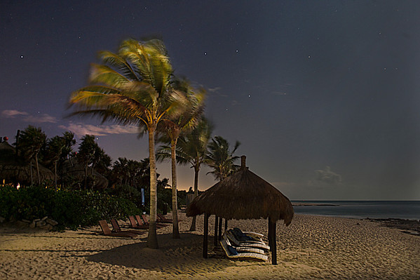 My favourite picture.  The winds off of the ocean move the trees while the full moon lights up the beach.