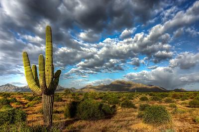 Nikon Coolpix A Landscapes