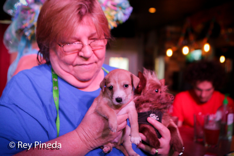 The Pet Easter Bonnet Contest at The Pub in Wilton Manors.  Proceeds benefit the Pet Project. <br /> April 20, 2019<br /> Photo by Rey Pineda,