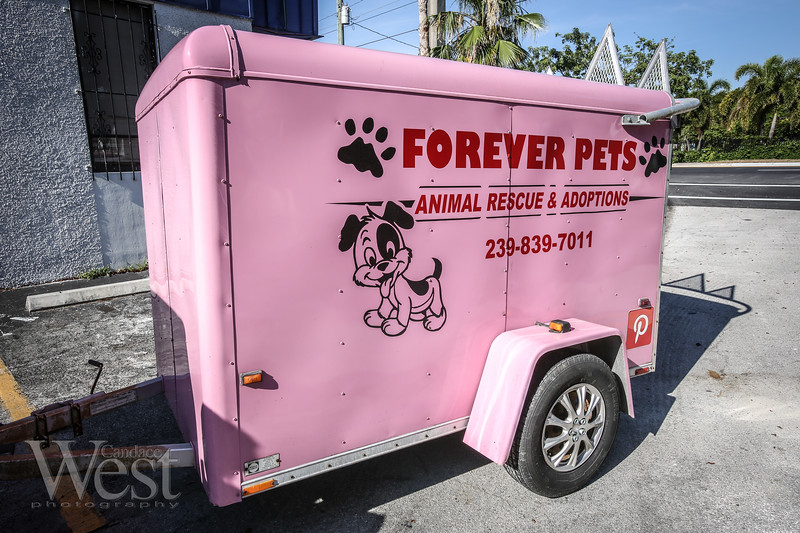 May 11, 2017<br /> Photo by CandaceWest.com<br /> The Pet Project,<br /> 2200 NW 9th Ave, Wilton Manors, FL 33311