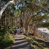 Noosa Heads National Park, Sunshine Coast. Queensland.