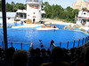 sea world 2003015