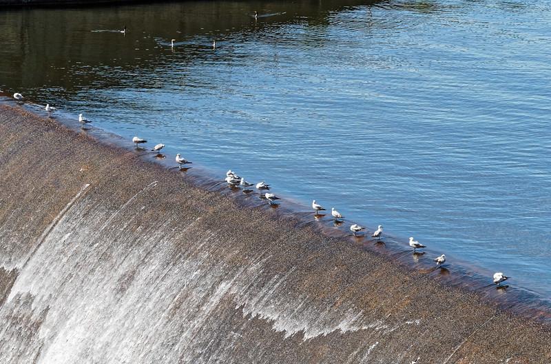 Dam on Oak Hollow Lake