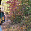 New Hope Valley Railroad Steam Locomotive pulls tourist train through foliage
