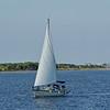 Sailboat, Volup-Te