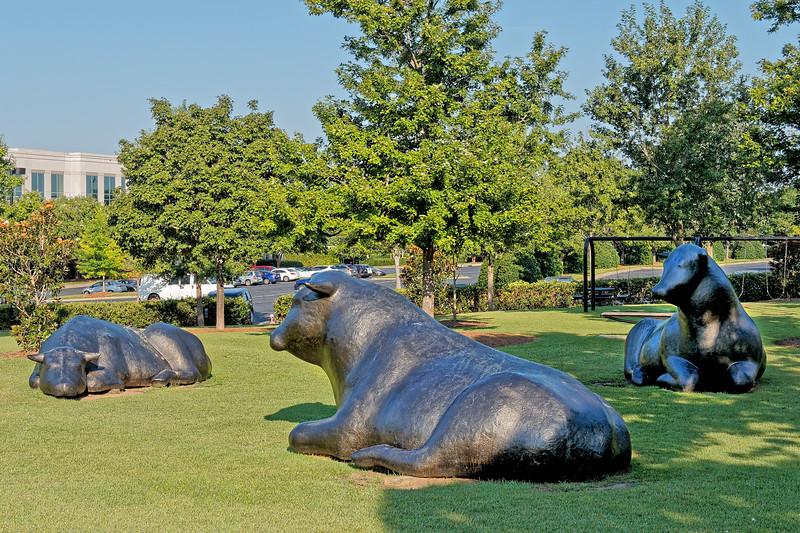Ballantyne Bulls by Peter Woytuk