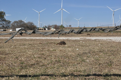 The epitome of Texas - barbed wire, cow dung, oil wells and wind farms.