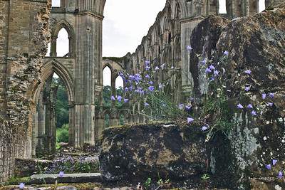 Picture 213 Rievaulx Abbey, August 2002 SM
