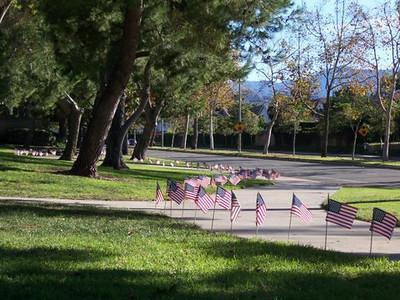 Flags Around Park Perimeter