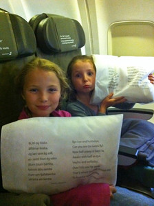 The airline was so great- pillowcases and head rests with fun Icelandic phrases and nursery rhymes