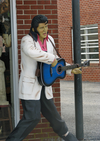 Elvis is in the house!