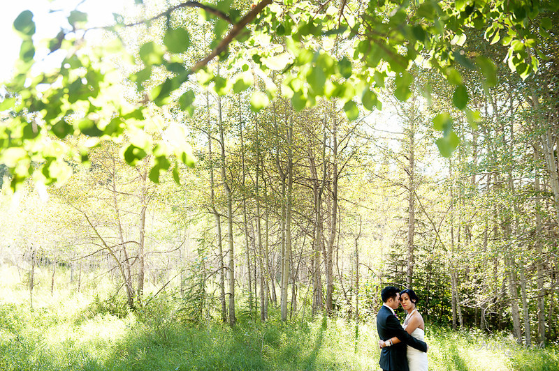 fish-creek-calgary-wedding6808