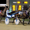Head Of The Barn leads the pack past the grandstands as driver Ed Hensley broke from the starting gate fast in the third race at Hoosier Park Saturday night.