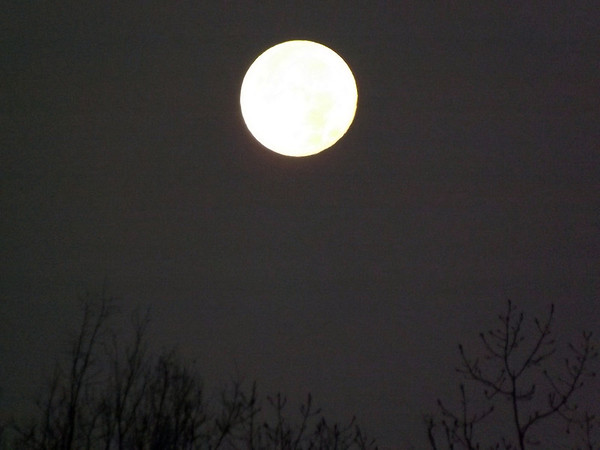 November moon in  Richland Township.<br /> <br /> Photographer's Name: J.R. Rosencrans<br /> Photographer's City and State: Alexandria, Ind.