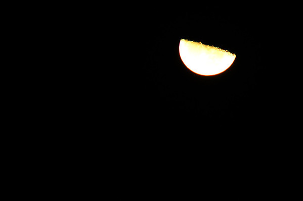 The moon on November 17.<br /> <br /> Photographer's Name: Morgan Elbert<br /> Photographer's City and State: Alexandria, Ind.