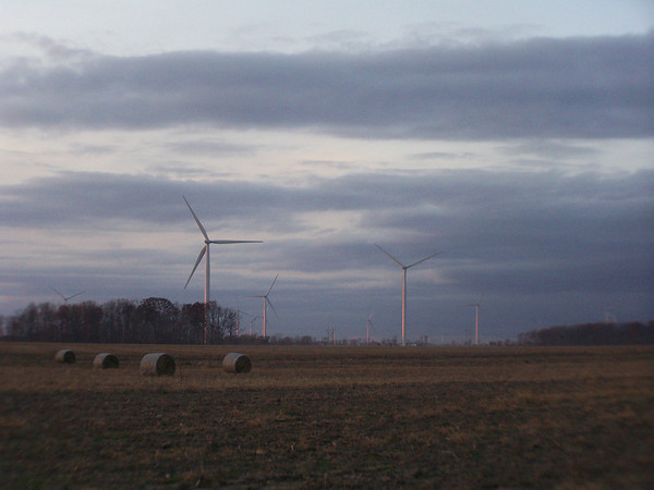 Windmill farm in Elwood<br /> <br /> Photographer's Name: Laura Johnson<br /> Photographer's City and State: Alexandria, IN