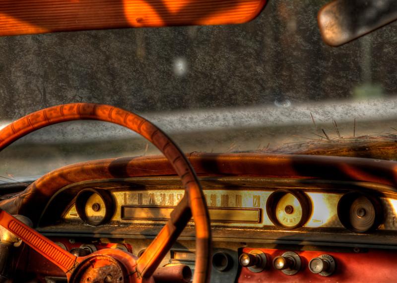 """Classic Dash"" by Teresa Pigeon"