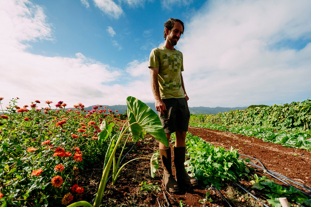 Counter Culture founder Rob Barreca tends to the farm on the North Shore of Oahu.