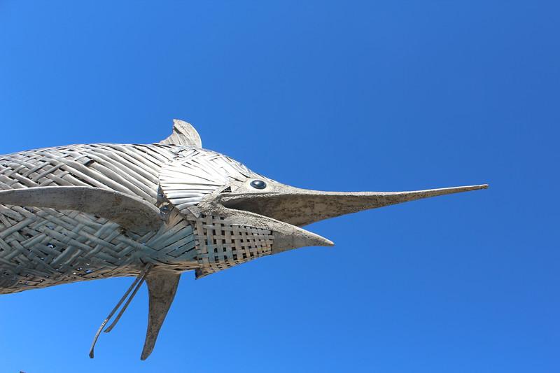 Fish in Flight