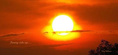 Sunny Side Up!!!!!!!!!!!!
