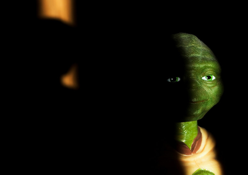 "21 February 2008.  Master Yoda.  ""Do or do not.  There is no try."""