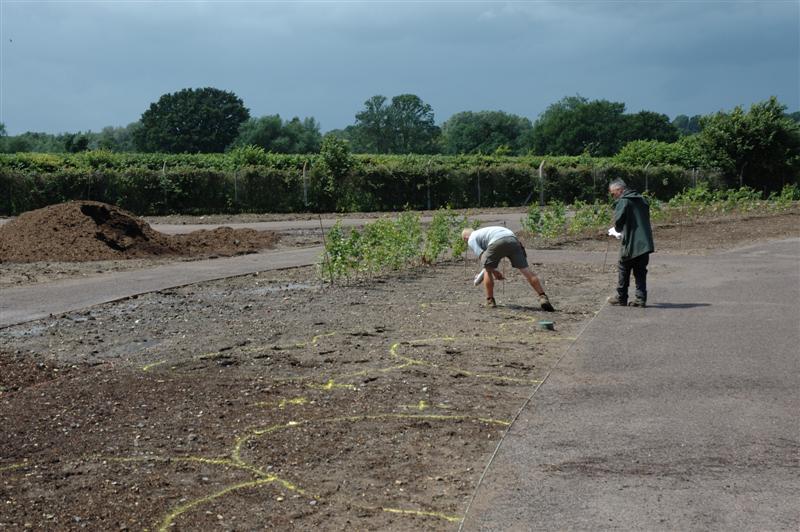 2007-07-04. RHS Garden Wisley, [GBR]. Åhh... målar rabatten... / Ohh, painting the border of flowers...
