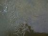 Ice on Wabamun Lake