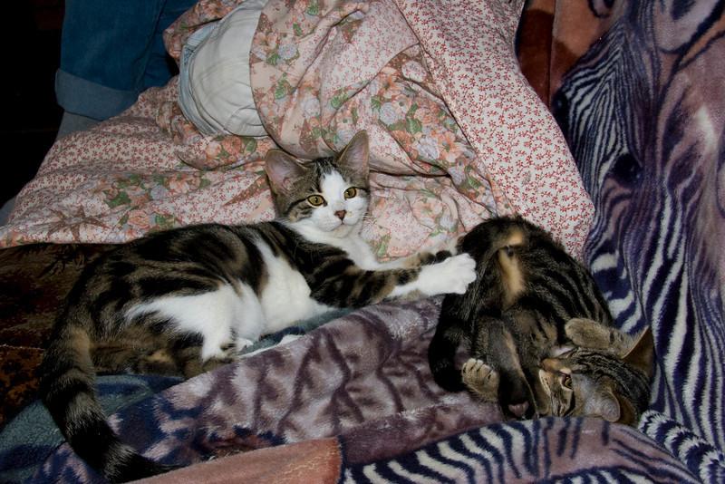 Niki & Jasper's visit