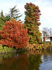 Leamington Spa - Autumn Colours