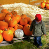 Pumpkin Pickin' - 05