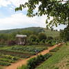 The terraced vegetable garden at Monticello.  Below are the fruit trees.