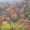 Fall colors are still beautiful.