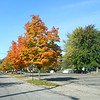 Fall's beginning on 11th street<br /> <br /> Photographer's Name: Harry Kirchenbauer<br /> Photographer's City and State: Anderson, IN