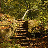 Stone Steps and Autumn Leaves at Turkey Run State Park<br /> <br /> Photographer's Name: Morgan M. Elbert<br /> Photographer's City and State: Alexandria, IN