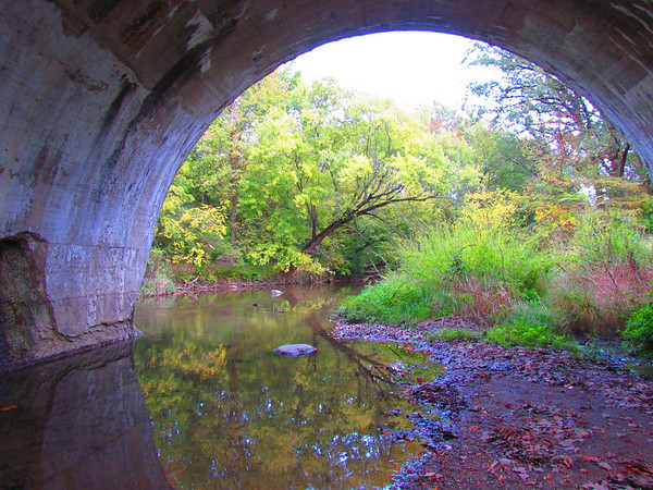 Looking at the fall colors from under the railroad bridge at Falls Park.<br /> <br /> Photographer's Name: Brian Fox<br /> Photographer's City and State: Anderson, Ind.