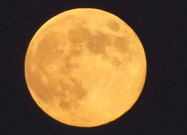 Halloween full moon.<br /> <br /> Photographer's Name: J.R. Rosencrans<br /> Photographer's City and State: Alexandria, Ind.