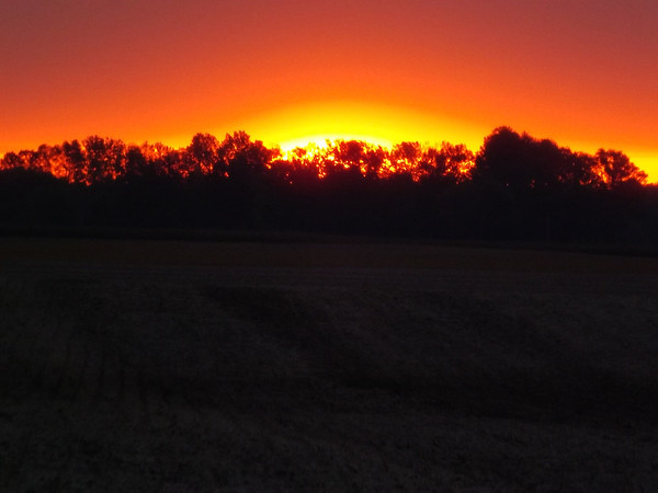 """""""October Morning"""" ,,,Richland twd. Picked soy bean field & sunrise<br /> <br /> Photographer's Name: J.R. Rosencrans<br /> Photographer's City and State: Alexandria, Ind."""