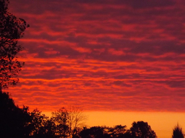 """A """"haunting"""" sunrise: my farm in Richland Township.<br /> <br /> Photographer's Name: J.R. Rosencrans<br /> Photographer's City and State: Alexandria, Ind."""
