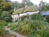 Thomas Hardy's Cottage 20th October 2013