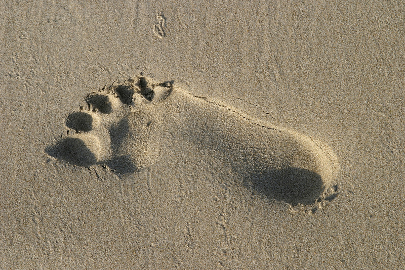 A single bare footprint on a sandy beach is outlined by its shadow. This tropical beach scene illustrates the primitive nature that we return to when we walk barefoot on the sand.