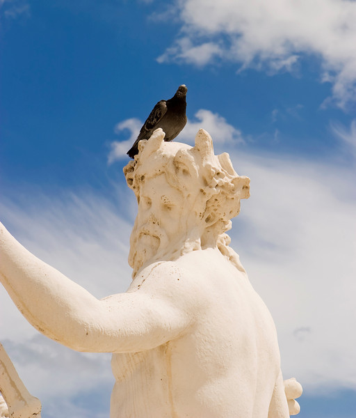 A statue of a man with a pigeon perched on his head in Paris.