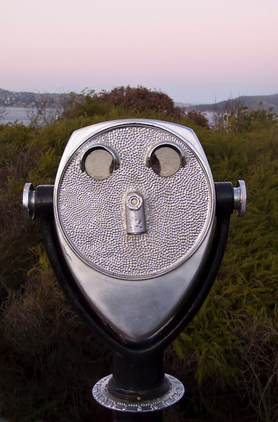 A telescope at an observation point at Golden Gate Park that, with some imagination, looks like a face with two eyes, a nose, ears, and a smiling mouth. The bush in the background even provides some hair.