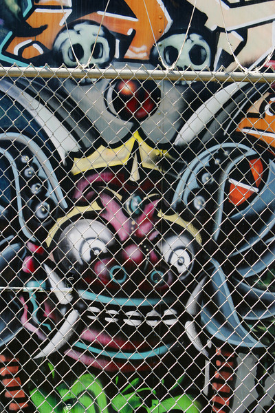 A drawing of a fantastical being with a crown and skulls that was observed on an old street car in Tucson behind a chain-link fence topped with barbed wire. The Old Pueblo Trolley agency had given official permission to street 'artists' and/or vandals to spray paint or tag the cars that were in the side lot as a creative way to forestall more destructive acts.
